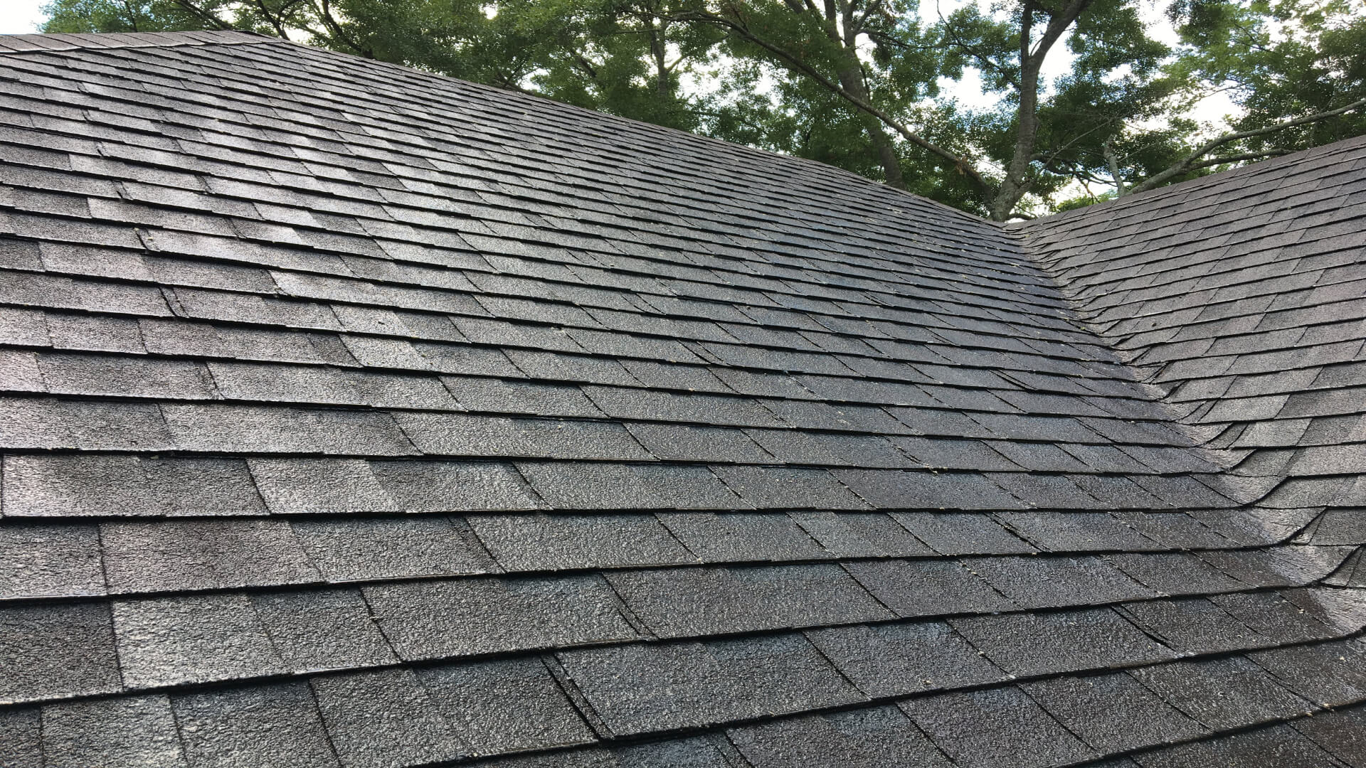 Asphalt Shingle Roof After